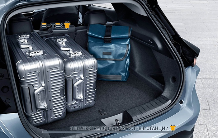 Багажник электрокара Chevrolet Menlo EV